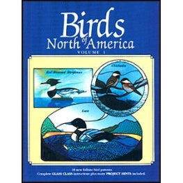 BIRDS OF NORTH AMERICA VOLUME I by McMillan and Doran