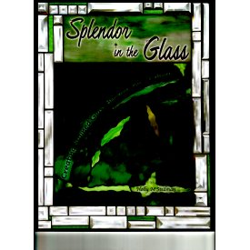 SPLENDOR IN THE GLASS by Holly Stedman