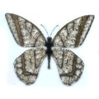 24 CARAT IRIDIZED 3-D SWALLOWTAIL BUTTERFLY
